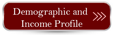 Demographic and Income Profile